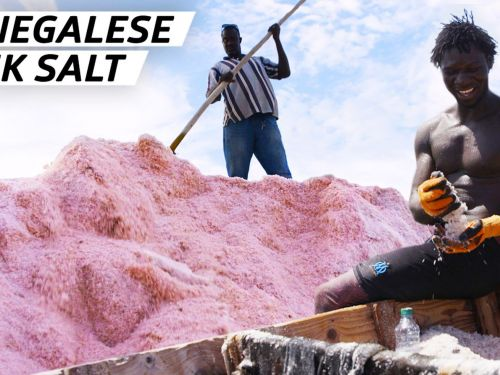 How 60,000 Metric Tons of Salt Are Harvested from One of the World's Saltiest Lakes