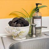 DIY Coffee Grounds Garbage Disposal Cleaners