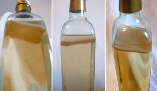 Good Question: What Is This Slime In My Vinegar?