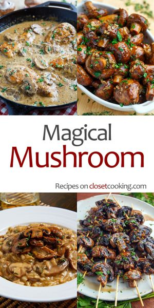 Magical Mushroom Recipes