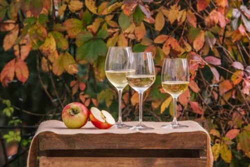 The Best Ciders to Pair with Our Favorite Fall Foods