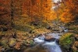 30 Stunning Pictures of Fall That Will Make You Wish It Lasted 365 Days
