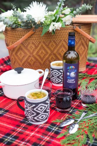 Winter Wine Picnic with Chicken and Bean Soup