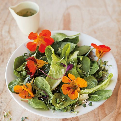 6 Spring-Inspired Salads to Make Now