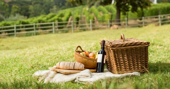Everything You Need To Have A Wine & Cheese Picnic In Your Backyard