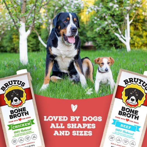 Star Chefs Partner with Brutus Broth for National Cook for Your Pet Day on November 1st