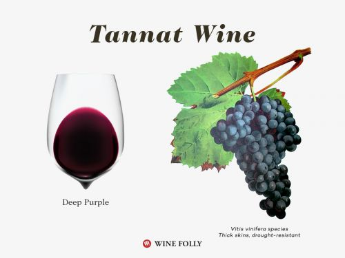Why You Want To Drink More Tannat Wine