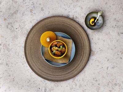 What the Critics Are Saying About Noma 2.0