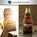 Constellation Brands Sales Top $8.1 Billion in Fiscal Year 2019