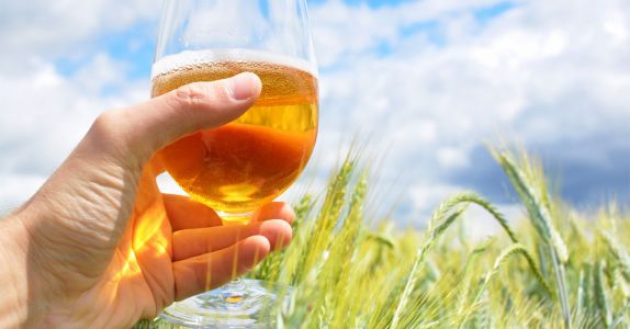 Estate Beers Are Rich With Terroir and Bragging Rights