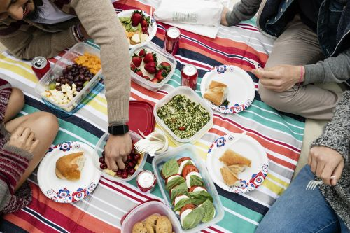 If You Love Park Picnics, These 8 Finds Will Make Them Even More Fun