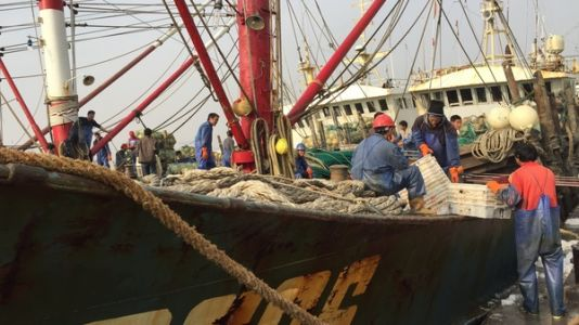 Could A Ban On Fishing In International Waters Become A Reality?