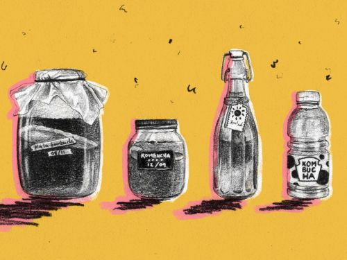 Kombucha's Health Benefits Might Be a Fantasy. That Doesn't Matter
