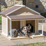 We Found the Cutest Dog Houses, And They're All Available on Amazon