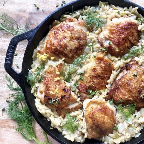 Chicken with orzo, fennel & leeks