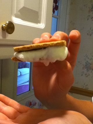 Microwave S'mores!