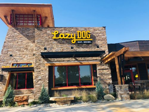 Lazy Dog Restaurant & Bar Opens in Fresno, CA