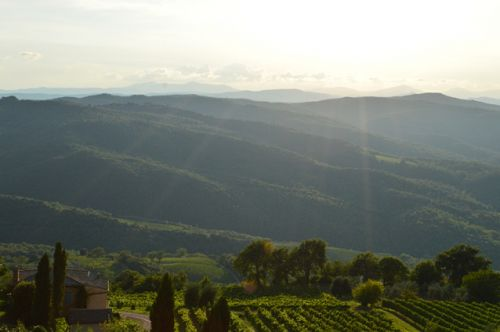 Brunellogate 10 years gone: Montalcino is stronger than ever
