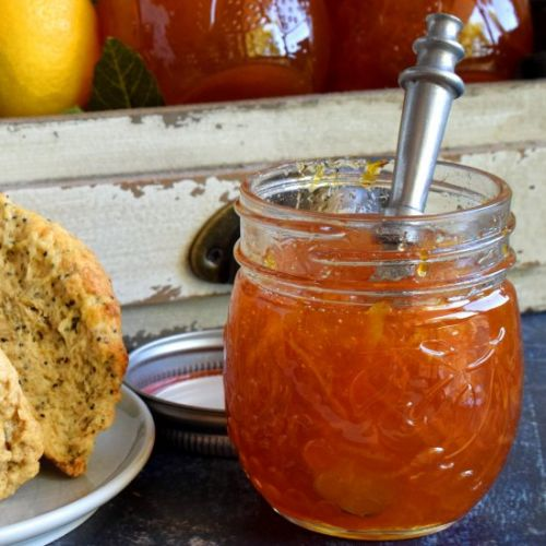 Orange Marmalade Preserves