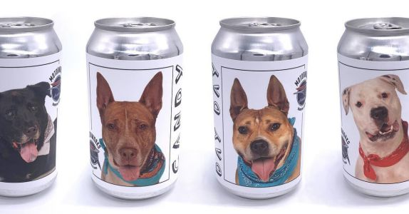Minnesota Woman Finds Long-Lost Dog on Florida Brewery Label