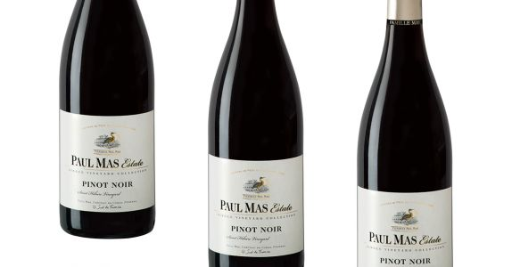 Paul Mas Estate Pinot Noir 'Saint Hilaire Vineyard' 2016