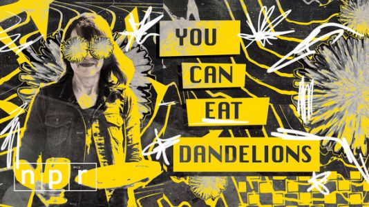 VIDEO: Dandelions Aren't Just Weeds. You Can Fry Them, Too