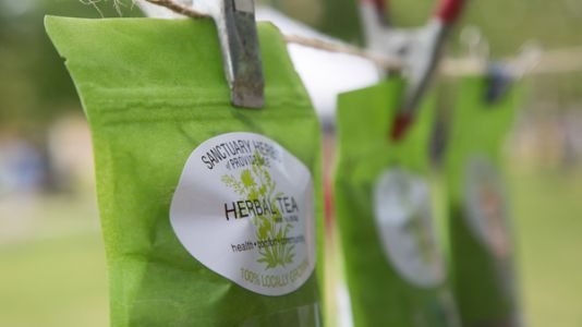 Politics Planted The Seed For A Business In Herbs And Teas