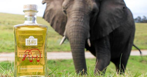 Here's A New Twist For Your Gin & Tonic: Elephant Dung