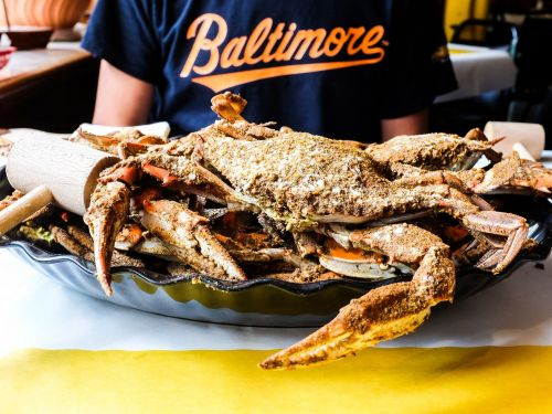 Trump's Immigration Policy Is Wrecking the Maryland Crab Industry