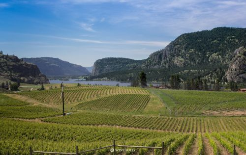 Okanagan Wine Country: The Most Stunning Place You've Never Heard Of