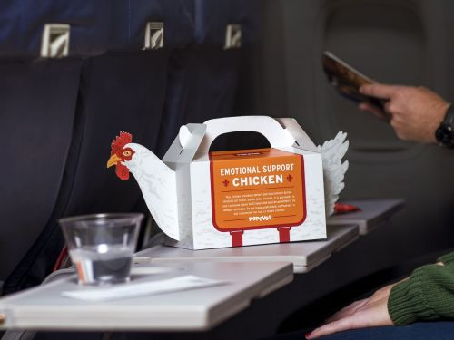 Popeyes' 'Emotional Support Chicken' Is Totally TSA-Friendly