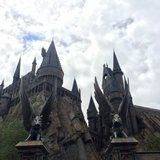 17 Things You Never Knew About the Wizarding World of Harry Potter, From a Former Employee