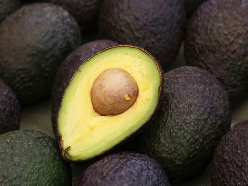 How a Bill Gates-Funded Startup Hacked the Avocado