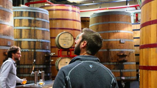 How to Get the Most Out of Your Visit to New Belgium Brewing Company