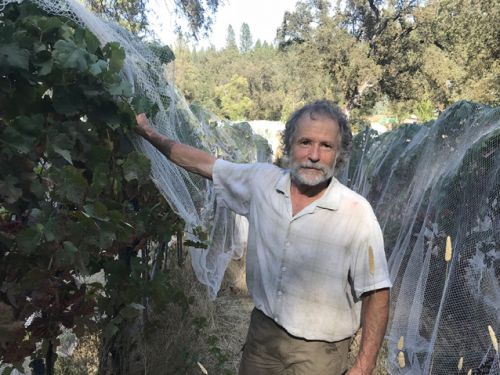 Gideon Beinstock of Clos Saron, a mensch among growers and winemakers