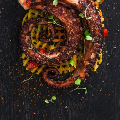 Grilled Octopus Salad With Waffle