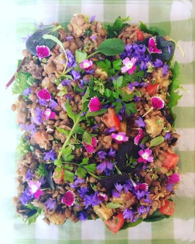 Lentils and flowers combo