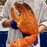 There Isn't a Bib Big Enough to Handle Costco's GIANT 3-Pound Lobster Claws