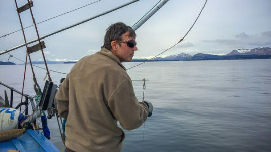 Gulf Of Alaska Cod Are Disappearing. Blame 'The Blob'