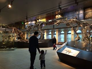 Natural History Museum of Los Angeles