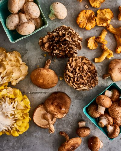 Mushrooms: The Best Ways to Pick Them, Cook Them, and Eat Them