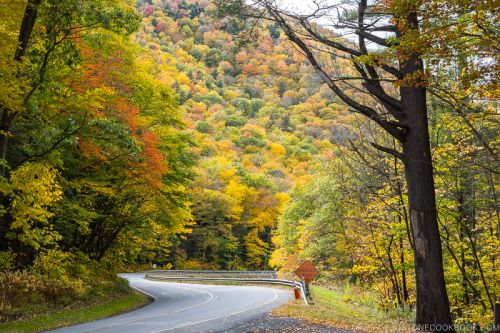 New England in the Fall Travel Guide