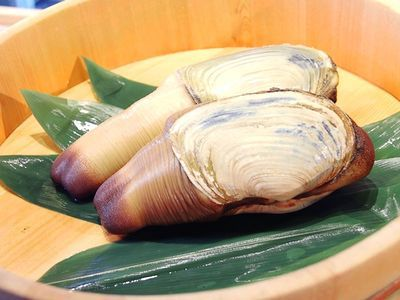 Watch: Geoduck Is the Star of This Seattle Omakase