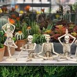 Michaels Is Selling Yoga Skeletons, and Halloween Has Never Looked So Zen