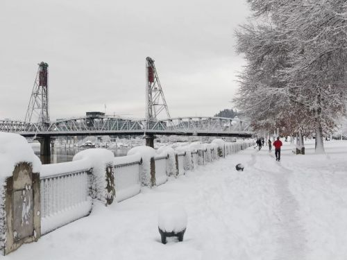 Portland Restaurants Grappled With Power Outages and Ice Damage During the Weekend Snowstorm