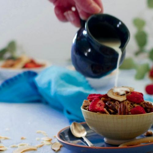 Low Carb Berry Granola