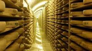 Thieves Steal $43,000 Worth of Comté Cheese from French Dairy