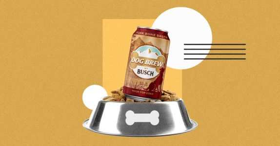 Busch Dog Brew Now Available for Happy Hour With Your Best Friend