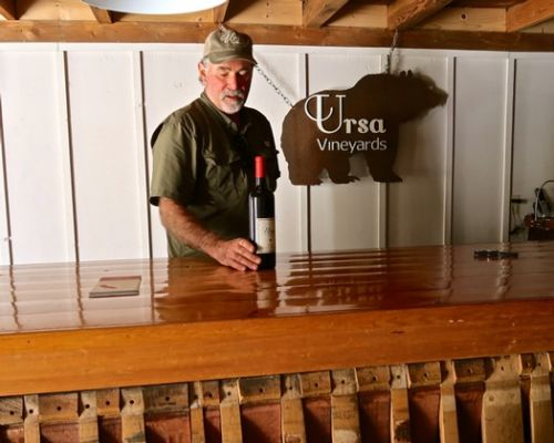 Ursa Vineyards finds dream warm climate grapes in Lodi's Alta Mesa appellation