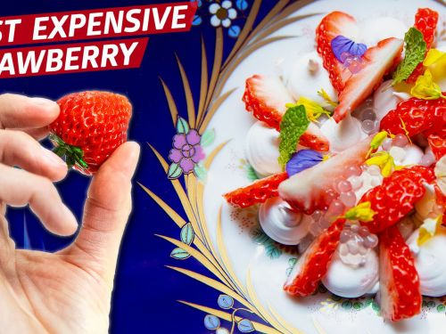 How Oishii Berry Brought Japan's Most Expensive Strawberries to America